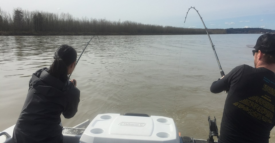 Fishing in bc for Fraser river fishing