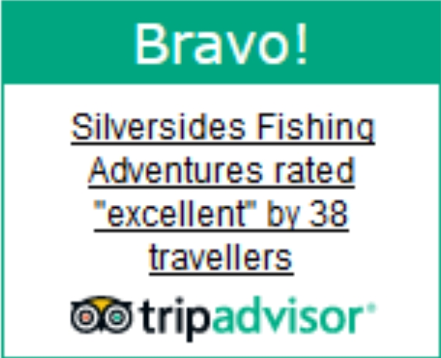 tripadvisor, reviews, fishing guides, fishing charters