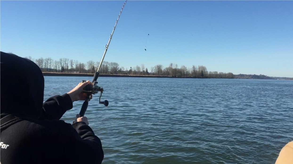 sturgeon fishing fraser river, sturgeon fishing bc, sturgeon fishing mission, fraser sturgeon fishing