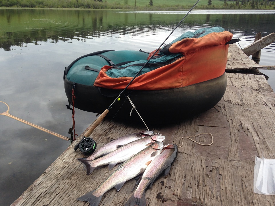 rainbow trout fly fishing, rainbow trout, trout fly fishing british columbia, fly fishing rainbow trout bc, trout fly fishing vancouver, trout fly fishing, fly fishing vancouver, trout fishing vancouver, vancouver fly fishing guide, lake fly fishing