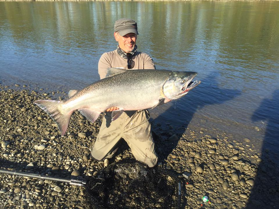Chinook salmon fishing guides fraser river bc for Fraser river fishing