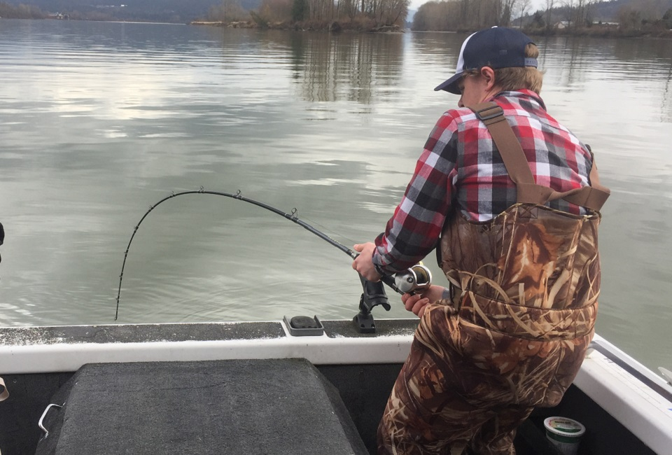 sturgeon fishing, fraser river sturgeon fishing, sturgeon fishing bc
