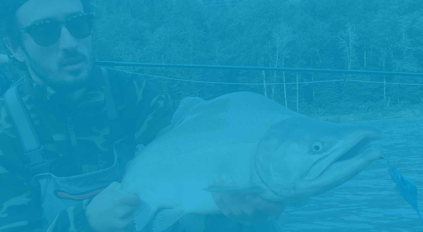 salmon fly fishing, fly fishing, fly fishing guides, coho salmon, fraser river fly fishing, fraser river bc fly fishing, fraser valley fly fishing, salmon fly fishing guides, vancouver fly fishing guides, bc fly fishing, fly fishing tours, fly fishing trips