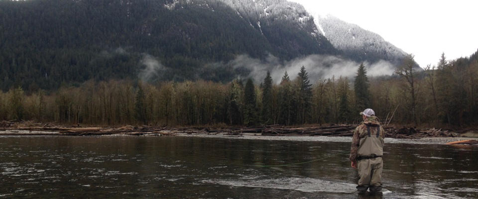vancouver fly fishing, fly fishing guide, trout fishing vancouver, fly fishing tours, fly fishing bc