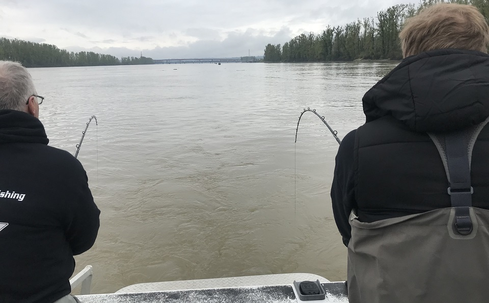 sturgeon fishing, sturgeon fishing bc, sturgeon fishing fraser river, sturgeon fishing charters, sturgeon fishing vancouver