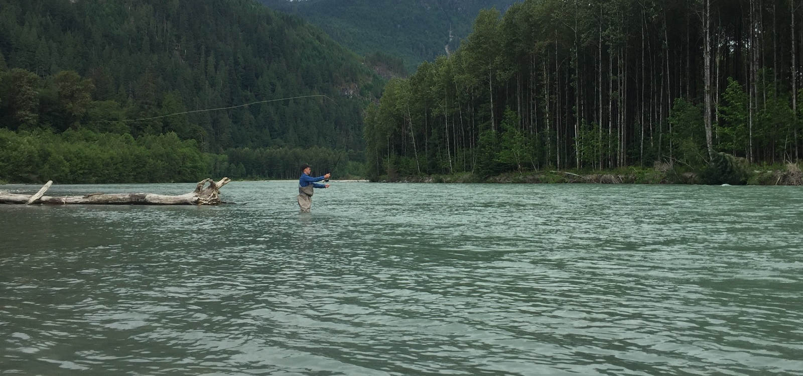 fly fishing vancouver, fly fishing guides vancouver, fly fishing bc, fly fishing guides bc, fly fishing whistler, trout fishing vancouver, steelhead fishing vancouver